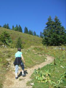 path-259820_1280
